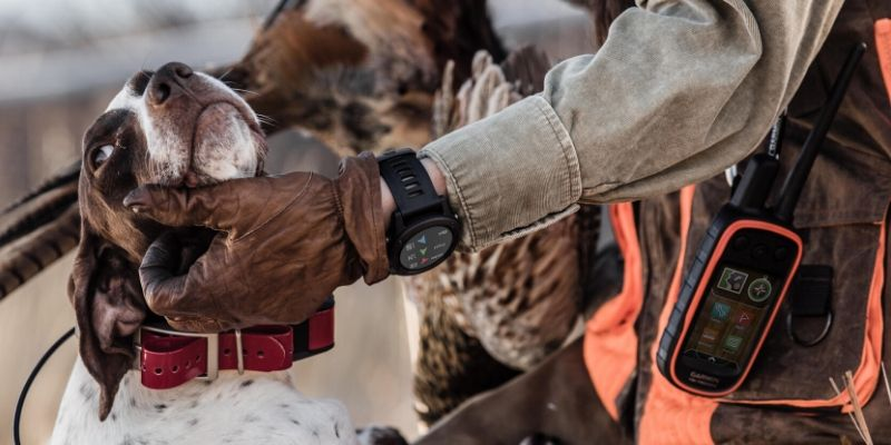 Dog tracking app on Garmin Fenix watch