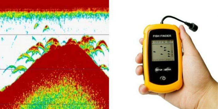 what do fish look like on a fish finder?